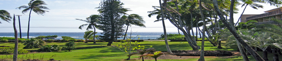 Kauai Rentals by Owner � Benefits of Own